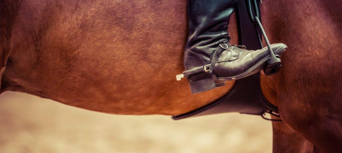 equitation femme